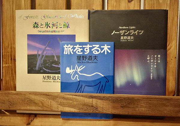 LIGHT WORKS WEB Magazine コラム:旅をしたくなる本