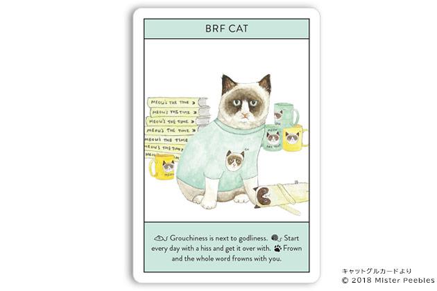 【BRF CAT / グランピーキャット】