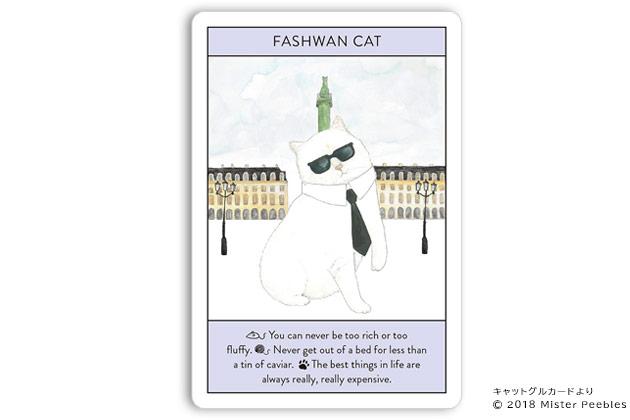 【FASHWAN CAT / セレブ猫】